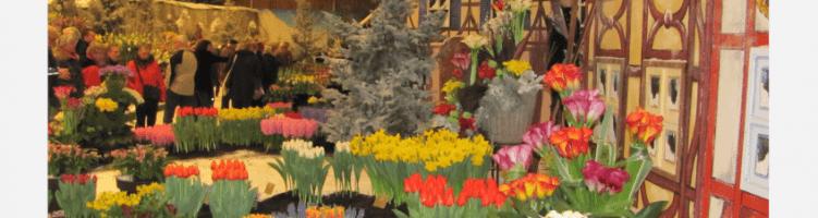 Lente in Breezand!