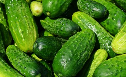 [inglés] German SERCOM user develops cucumber beer