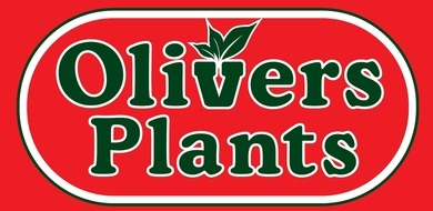 British horticulture sector: Olivers Plants