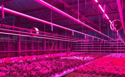 [angielski] SERCOM enters British horticulture sector