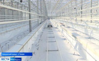 Eerste aardbeien geplant in Rusland